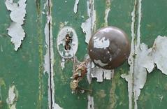 Neglected green door (Monceau) Tags: green door peelingpaint knob keyhole neglected
