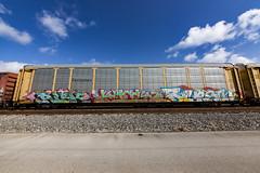 (o texano) Tags: houston texas graffiti trains freights bench benching risk kick msk awr