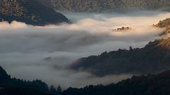 Live in the clouds (Jean-Luc Peluchon) Tags: landscape paysage montagne mountain nuage cloud mist brouillard brume haze fog fz1000 weather météo