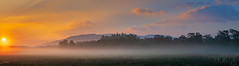 Morning sunrise in Scotland. (Tacksoon) Tags: scotland aviemore sunrise meadows fog