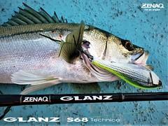 GLANZ S68 Tecnical (ZENAQ) Tags: zenaq glanz seabass bigbait ボートシーバス
