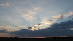 The sun's rays make their way through the clouds. 08/07/2018 Lebedin. Ukraine. (ALEKSANDR RYBAK) Tags: восход рассвет утро солнце свет лучи небо тучи пейзаж природа атмосфера лето погода сезон sunrise dawn morning sun shine beams sky clouds landscape nature atmosphere summer weather season