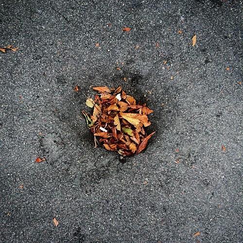 L'automne dans un trou noir