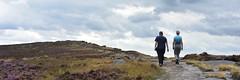 Stanage Edge Summit Path (Bri_J) Tags: stanageedge peakdistrict nationalpark hathersage derbyshire uk countryside nikon d7200 summit path panorama