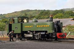 Number 8 (Treflyn) Tags: driver vale rheidol valeofrheidol 262t number 8 locomotive shed aberystwyth wales vor