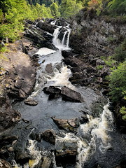 Rogie Falls 2 (smackenzie77) Tags: falls rogiefalls scotland highlands waterfall water river stream salmon tree ferns