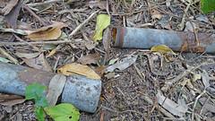 Ruin_10 (Tony Markham) Tags: mine mining coal coalmine coalmining old ruins ruin abandoned disused wollongong illawarra bush bushwalk escarpment