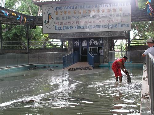 В пащу крокодилу Паттайя Таїланд Thailand InterNetri 26