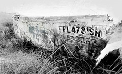 the Wreck of the old FFL47 (maj488/mike) Tags: wreck derelict boat marooned ruins seaoats florida eastpoint