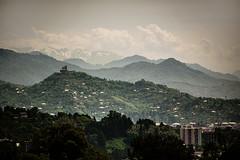 The architect (Melissa Maples) Tags: batumi batum ბათუმი adjara აჭარა georgia gürcistan sakartvelo საქართველო asia 土耳其 nikon d3300 ニコン 尼康 nikkor afs 18200mm f3556g 18200mmf3556g vr spring მწვანეკეპი mtsvanecape ბოტანიკურიბაღი botanicalgarden mountains