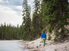 jasper 2017 095 (adamlucienroy) Tags: jasper jaspernationalpark nationalpark forest gh4 panasonic telephoto leica primelens prime 25mm f14 alberta edmonton yeg yegdt canada