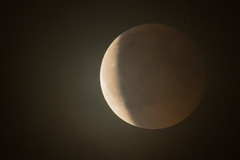 Eclipse total Julio 2018 (Joaquim F. P.) Tags: 2018 julio joaquimfp luna eclipse nubes salou tarragona spain moon blood sangre total cielo nublado velado sony a6300 300mm kenko 2x recorte2x 1800mmequiv crop2x 6mp tripode manfrotto190 rotula junior410 tripod head manfrotto ilce 6300 high iso nocturna astro astronomia sky meteo nex mirrorless commlite adapter adaptador nikon f emount apsc sensor evil ilce6300 alpha ilc milc 1600 bealpha