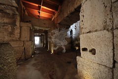 Colosseo_19