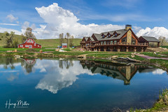 Meanwhile, back at the ranch... (HarryMiller002) Tags: flyfishing ranch reflections montana bozeman warriorsquietwaters quietwatersranch