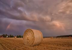 Erntezeit (SonjaS.) Tags: erntezeit regenbogen rainbow wolken clouds feld ernte field landwirtschaft gewitter regen sonjasayer weitwinkel strohballen stroh stoppelfeld badenwürttemberg sonnenuntergang sunset