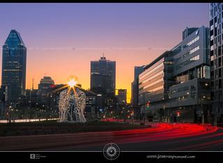 Montréal downtown DRI