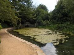 Bath Prior Park Serpentine Lake 2018 08 02 #1 (Gareth Lovering Photography 5,000,061) Tags: bath prior park nationaltrust gardens palladian bridge serpentine lakes viewpoint england olympus penf 14150mm 918mm garethloveringphotography