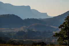 Lillian Rock and Border Ranges (max_wedge) Tags: border ranges