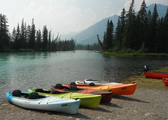 Bow River Parkway .. (Mr. Happy Face - Peace :)) Tags: art2018 bowriver banff alberta canada nature hiking rockies trees forest canadaparks cans2s flickrfriends boating kayaking outdoors
