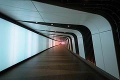 destination (Derek Robison) Tags: vanishingpoint pattern repetition london tunnel lonefigure colour lines