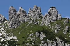 Scogli (lincerosso) Tags: montagna dolomiti marmarole piandeibuoi estate pascolo camosci scenario bellezza armonia