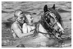 B57I6118-Appleby-Horse-Fair-2018 (duncancooke.happydayz) Tags: appleby horse fair cumbria westmorland horses gypsies gypsy traveller travellers water river people black white bw boy