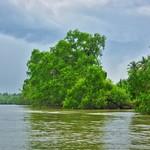 The Mae Klong river passing Amphawa in Samut Songkhram province near Bangkok, Thailand thumbnail