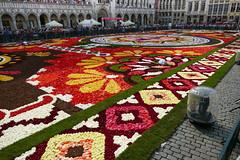 Le Mexique à l'honneur sur la Grand-Place de Bruxelles (CORMA) Tags: 2018 belgique belgium bruxelles brussels tapisdefleurs flowercarpet europe guanajuato mexique bégonia begonia