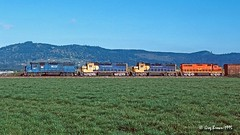 Ashahr Dasher (C.P. Kirkie) Tags: willamettepacific wprr eugenehauler gp392 hlcx willamettevalley toledobranch trains railroads emd valley siding