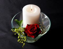 The Lit Candle (Steve Taylor (Photography)) Tags: rose berries candle lit alight burning bowl wedding black green red white closeup macro glass newzealand nz southisland canterbury christchurch flower