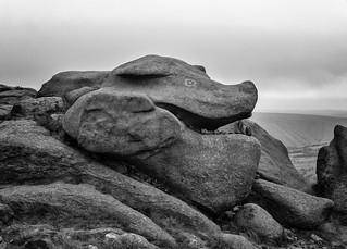 Pig Rock