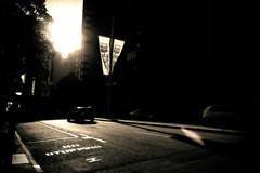 No! Never! (ChrisRSouthland) Tags: street contraluz urban city perth mm leicammonochrom leicaelmarit28mmf28 colorised