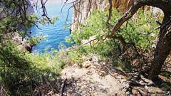 Swimrun Demain Rebelote aout 201800150 (swimrun france) Tags: swimrun calanques aout 2018 cassis freeswimrun provence trailrunning swimming open water hiking climbing