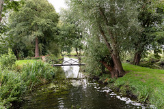 Garden in Ellingham, Norfolk (Electric Gnome) Tags: ellingham garden summer overcast green rural country uk england nikon d850 nikon2470mm bridge trees scenic