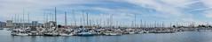 emeryville marina summer panorama (pbo31) Tags: bayarea california nikon d810 color july 2018 summer city urban pbo31 boury panorama large stitched panoramic sky emeryville marina eastbay alamedacounty sail boat bay blue