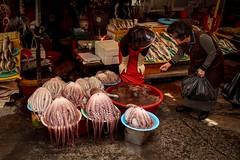 at the market (alexhaeusler) Tags: people street korea fish market