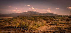 Sun setting over Masai Mara, East Africa (Catherine Gidzinska and Simon Gidzinski) Tags: 2017 africa june masai masaivillage tanzania arusharegion tz ngc panorama 7dwf