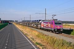 HSL 186 383 @ Zeebrugge (Maarten Schoubben) Tags: hsl logistik railcolor europe eisenbahn