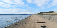 Allanfearn Bay, near Inverness, July 2018 (allanmaciver) Tags: allanfearn bay inverness scotland highlands coast moray seaweed soft sand water weather clouds allanmaciver