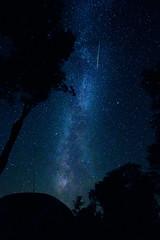 Speeding Perseid under the Milky Way (gabormatesz) Tags: canon canon80d 1018mm wideangle milkyway astrophotography astroscape astro nature naturephotography photography perseid perseids bükk miskolc hungary magyarország hu