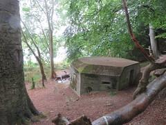 Thames Path - Tilehurst to Wallingford (Andrew Grantham) Tags: thamespath riverthames thames pillbox