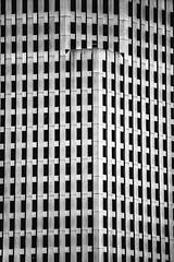 Transbay Terminal Opening Day (Thomas Hawk) Tags: america bayarea california sf sfbayarea salesforcepark salesforcetransitcenter sanfrancisco transbayterminal transbayterminalopeningday transbaytransitcenter us usa unitedstates unitedstatesofamerica westcoast architecture bw transbay terminal opening day