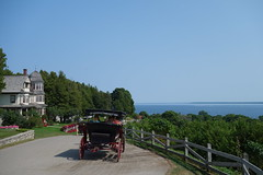 DSC00864 (denisfile) Tags: mackinacisland michigan usa greatlakes horse horsecarriage huronst