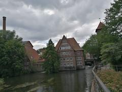 IMG_20180718_114758 (markusg2010) Tags: lüneburg stadt niedersachsen germany hanse hansestadt hanseatic lüneburgerheide altstadt deutschland backsteingotik roterosen