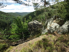 nahe der Leibis Talsperre (germancute) Tags: nature outdoor landscape landschaft thuringia thüringen germany germancute deutschland wald forest berge rock mountains tree baum