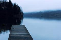 0813 Blue Morning (Hrvoje Simich - gaZZda) Tags: landscape outdoors noperson water lake pond longexposure wood pier trees morning blue mist travel bohinj slovenia europe nikon nikond750 nikkor283003556 gazzda hrvojesimich