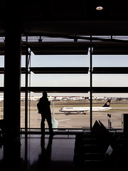 Plane Spotting (Steve Taylor (Photography)) Tags: luthansa seating window column light muted contrast happy glass man uk gb england greatbritain unitedkingdom london silhouette reflection plane aeroplane aircraft airport heathrow terminal2 taxiing taxying