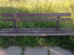 Hampstead Heath (London and more) Tags: hampstead heath london camden grass bench commemoration