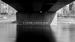 Fight whattt?? (HansPermana) Tags: dresden saxony sachsen germany deutschland ostdeutschland eastgermany ddr city altstadt historic oldtown elbe architecture spring march 2018