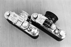 Scan-180819-0004 (RodGSilva) Tags: 2018 35mm 50mm rodgsilva d76 eos3 rodgsilvaphotography ss100 fuji fujifilm monochrome wwwrodgsilvaphotocom